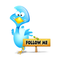twitter_bird_big